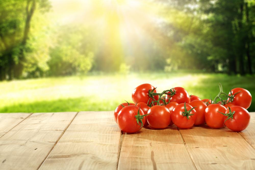 Tomato Leaves Lampe Berge Fragrance