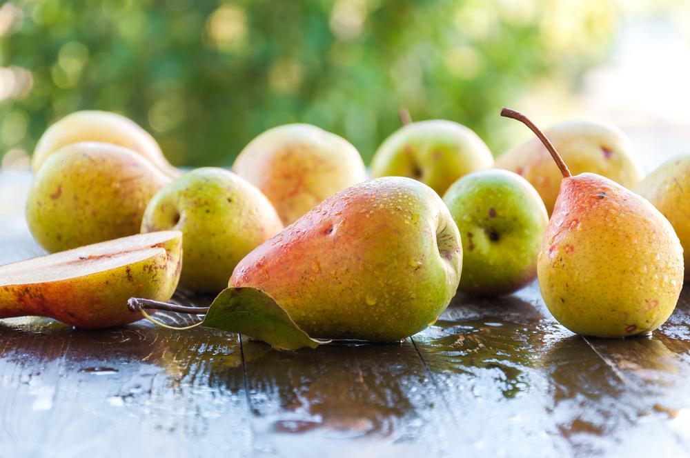 sweet pears lampe berger